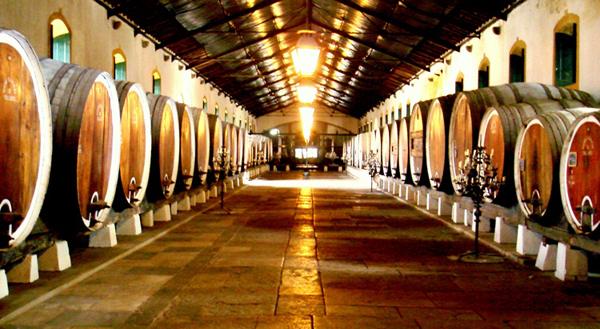 colares-bijzonder-wijngebied-portugal