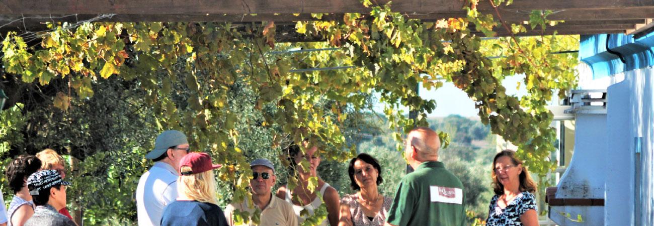 ontmoet wijnboeren