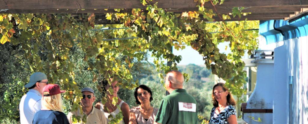 Wijngaard beginnen portugal