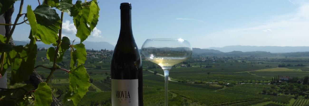 slovenie wijn