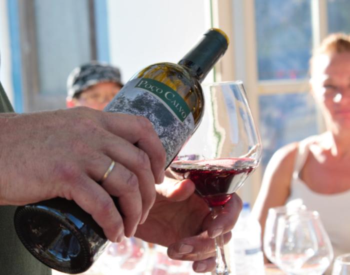 Wijnproeverij Portugal